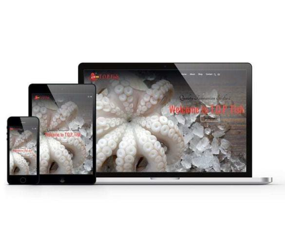 Website Design Top Fish PL